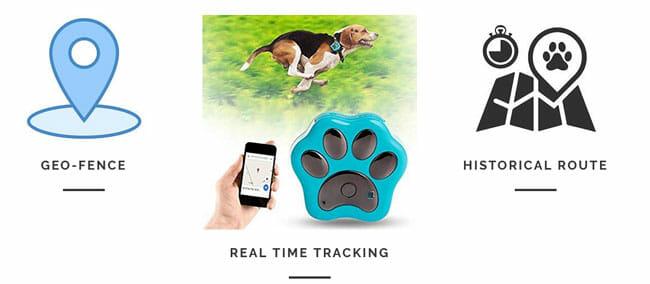 Paw-Tracker-how work