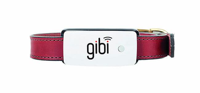 Gibi-2nd-Gen design