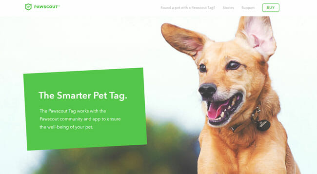 Pawscout homepage