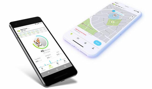 Whistle-3 app