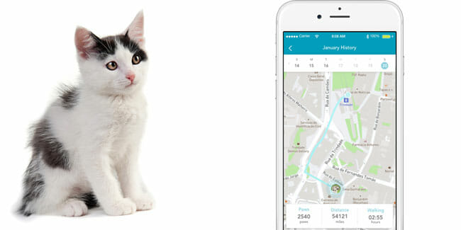 Findster Duo+ Geofencing