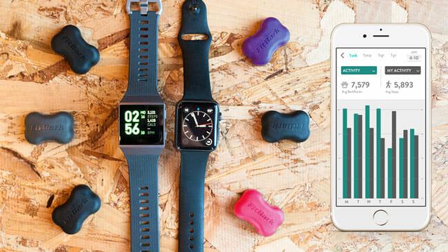 FitBark app for smart phone