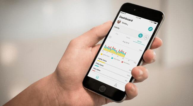 Felcana Design app