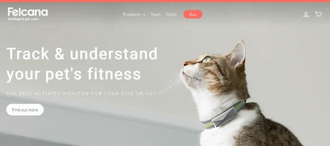 Felcana screenshoot homepage