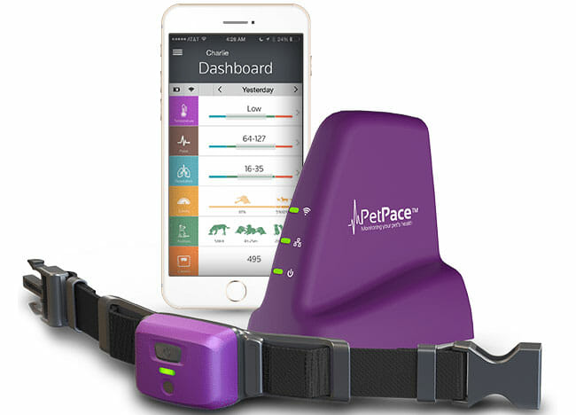 PetPace phone app