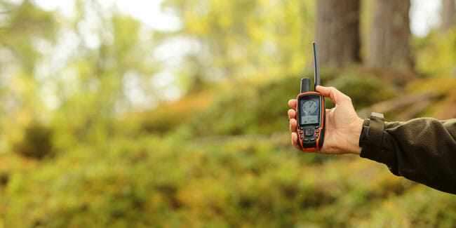 GPS pet tracker in the forest