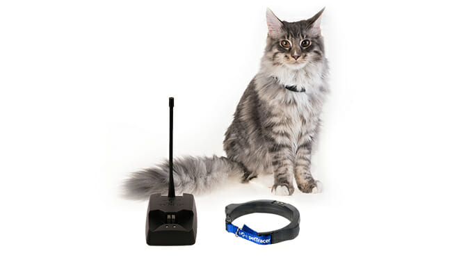 PetTracer design pet tracker and cat