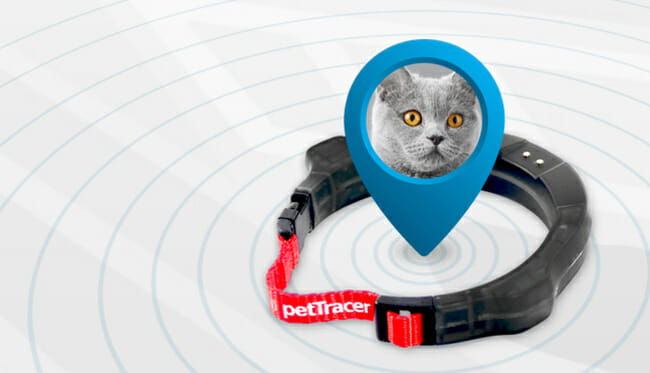 PetTracer for cat