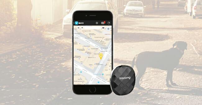 Trackimo dog and smart phone app