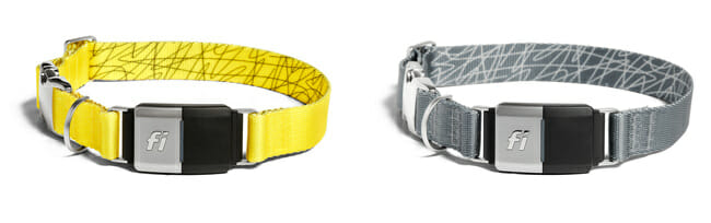 fi pet tracker yellow and grey