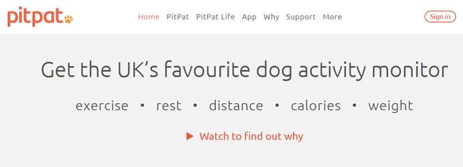 PitPat homepage printscreen